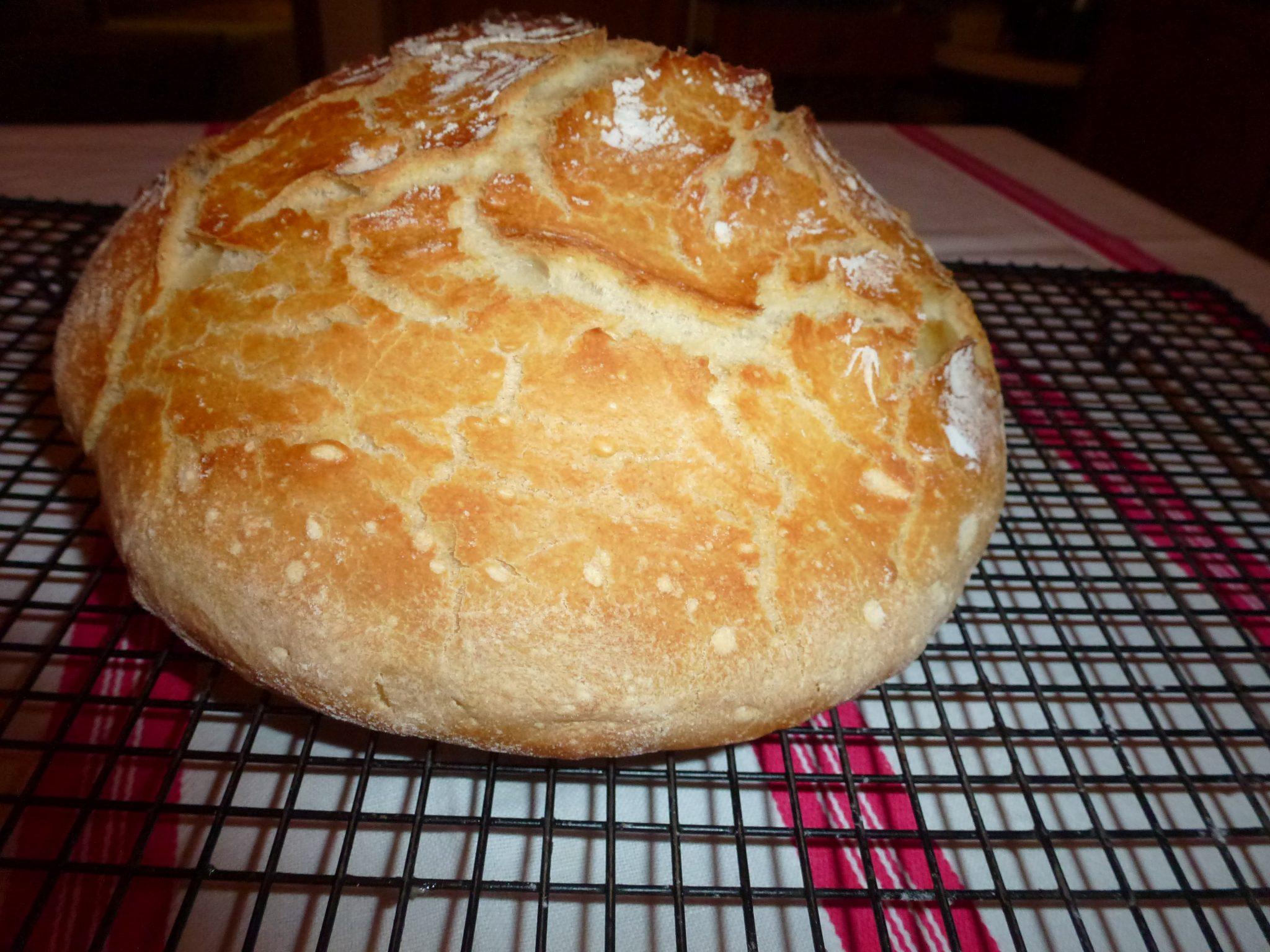 pain agriculteurs