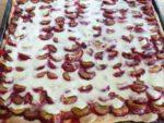 Italian Plum Cake with vanilla pudding