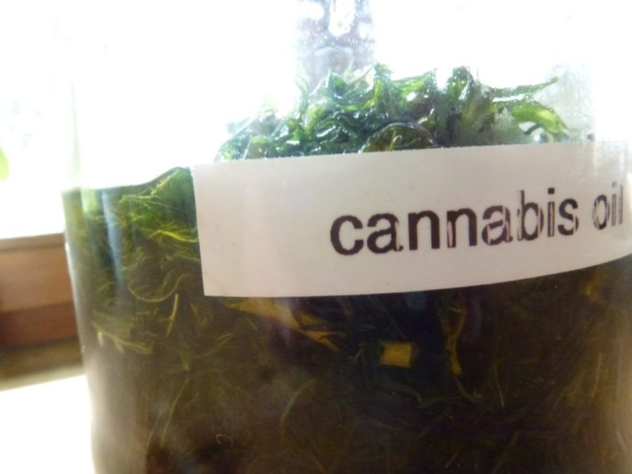 Cannabis oil in jar