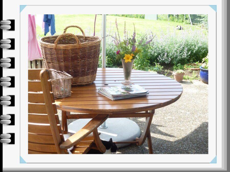 un bel set up per il giardino