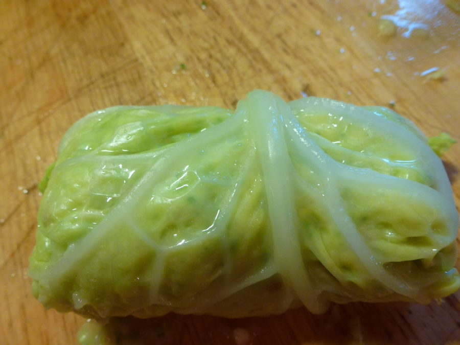 cabbage leaf rolled